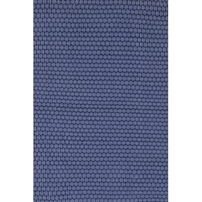 Indoor/Outdoor Blue Outdoor Area Rug Rug Size: Rectangle 6' x 9'