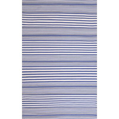 Indoor/Outdoor Hand Woven Blue Area Rug