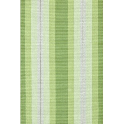 Hand Woven Green Area Rug Rug Size: 9 x 12
