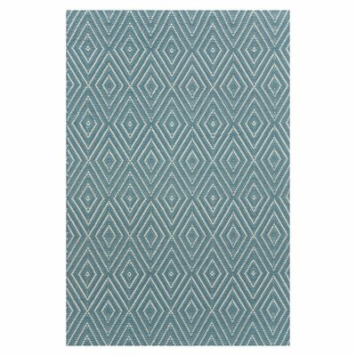 Hand Woven Blue Indoor/Outdoor Area Rug Rug Size: 6 x 9