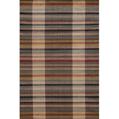 Swedish Rag Hand Woven Indoor/Outdoor Area Rug Rug Size: 6 x 9