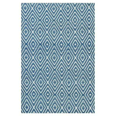 Hand Woven Blue Indoor/Outdoor Area Rug Rug Size: Rectangle 4 x 6
