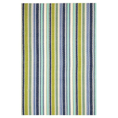 Hand Woven Green/Blue Indoor/Outdoor Area Rug Rug Size: 85 x 11