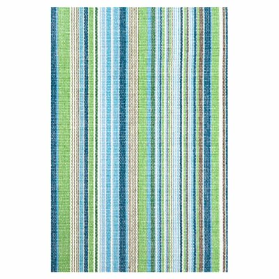 Hand Woven Cotton Blue Area Rug Rug Size: Rectangle 8 x 10