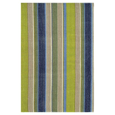 Hand Woven Green/Blue Indoor/Outdoor Area Rug Rug Size: 4 x 6