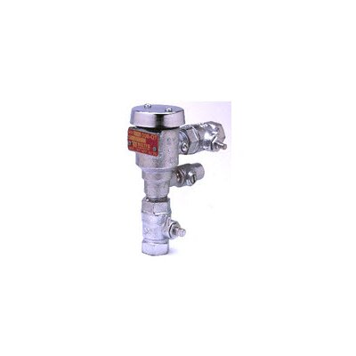 Continuous Pressure Vacuum Breaker Assembly