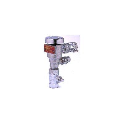 Continuous Pressure Vacuum Breaker Assembly