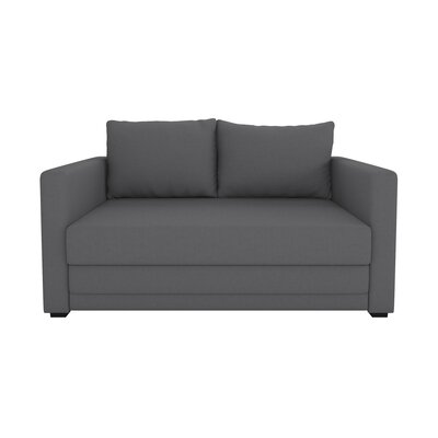 Campanelli Sleeper Sofa Upholstery: Gray