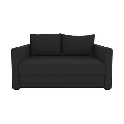 Campanelli Sleeper Sofa Upholstery: Black
