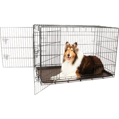 Double Door Pet Crate Size: X-Large