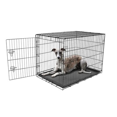 Single Door Pet Crate Size: Large