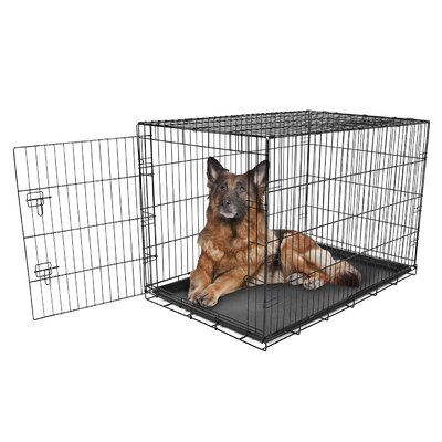 Single Door Pet Crate Size: X-Large