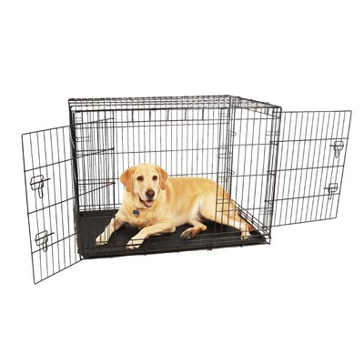 Double Door Pet Crate Size: Large