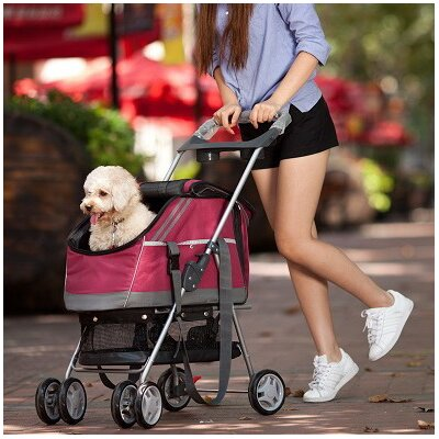 Outdoors Convertible Pet Stroller Color: Red