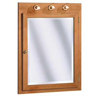 Salerno Series Lighted 24 x 32 Surface Mount Medicine Cabinet