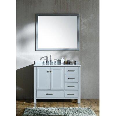Marine 43 Single Bathroom Vanity with Mirror Base Finish: Gray