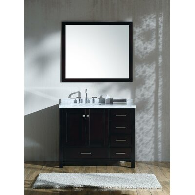 Marine 43 Single Bathroom Vanity with Mirror Base Finish: Espresso