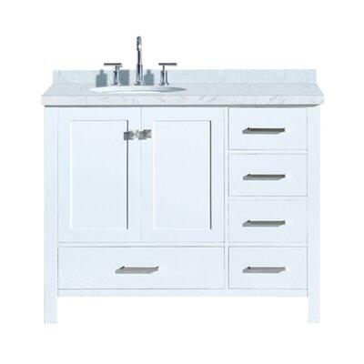 Utley Modern 43 Rectangular Single Bathroom Vanity Set Base Finish: White