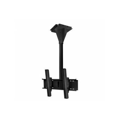 Wind Rated Concrete Swivel/Tilt Universal Ceiling Mount for Screens Finish: Black