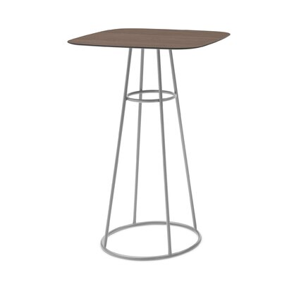 Clevedon Bar Table Finish: Satinated Aluminum, Color: Wild Oak