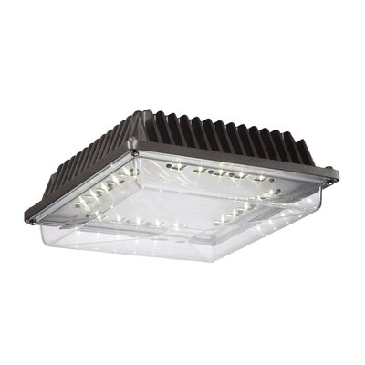 20-Light Flush Mount
