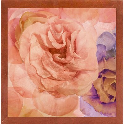 'Rosa Cuadrada' Graphic Art Print Format: Affordable Canadian Walnut Medium Framed Paper, Size: 18.7
