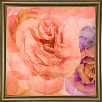 'Rosa Cuadrada' Graphic Art Print Format: Bistro Gold Framed Paper, Size: 18.7