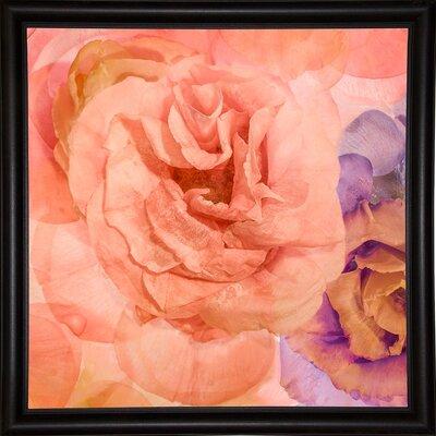 'Rosa Cuadrada' Graphic Art Print Format: Bistro Espresso Framed Paper, Size: 18.7