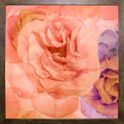 'Rosa Cuadrada' Graphic Art Print Format: Cafe Mocha Framed Paper, Size: 18.7