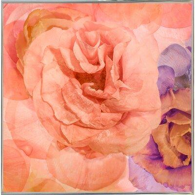'Rosa Cuadrada' Graphic Art Print Format: Silver Metal Framed Paper, Size: 18.7