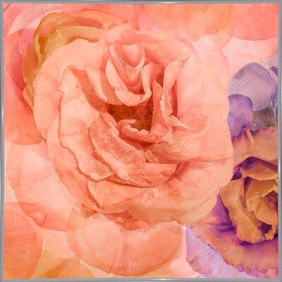 'Rosa Cuadrada' Graphic Art Print Format: White Metal Framed Paper, Size: 18.7