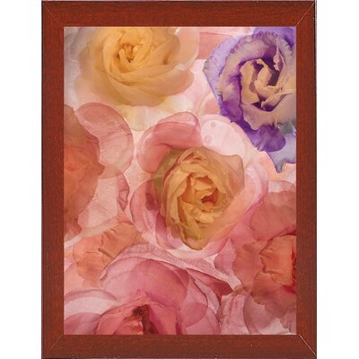 'Rosas Compo 2' Graphic Art Print Format: Affordable Red Mahogany Medium Framed Paper