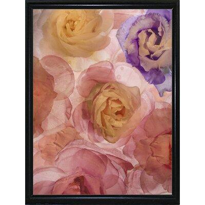 'Rosas Compo 2' Graphic Art Print Format: Flat Black Metal Framed Paper