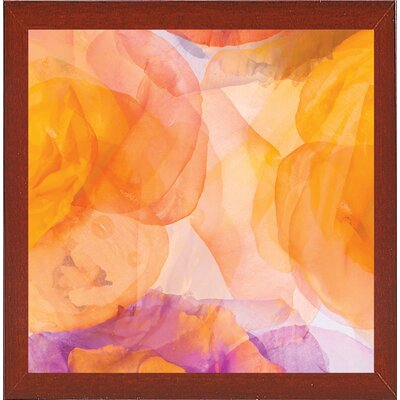 'Rosas Compo 5' Graphic Art Print Format: Affordable Red Mahogany Medium Framed Paper, Size: 12.6