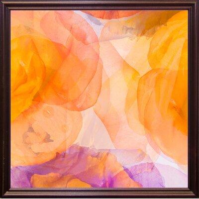 'Rosas Compo 5' Graphic Art Print Format: Cherry Grande Framed Paper, Size: 12.6