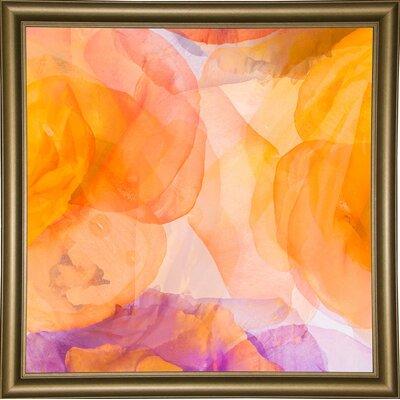 'Rosas Compo 5' Graphic Art Print Format: Bistro Gold Framed Paper, Size: 12.6