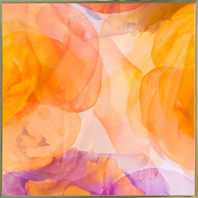 'Rosas Compo 5' Graphic Art Print Format: Gold Metal Framed Paper, Size: 12.6