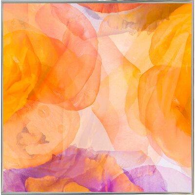 'Rosas Compo 5' Graphic Art Print Format: Silver Metal Framed Paper, Size: 12.6