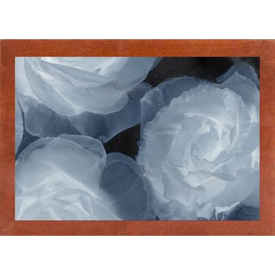 'Rosas Azules 2' Graphic Art Print Format: Affordable Canadian Walnut Medium Framed Paper, Size: 20