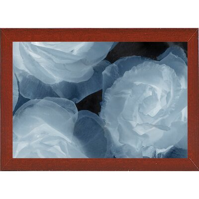 'Rosas Azules 2' Graphic Art Print Format: Affordable Red Mahogany Medium Framed Paper, Size: 20
