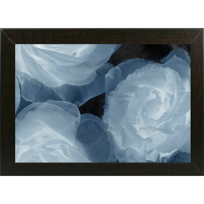 'Rosas Azules 2' Graphic Art Print Format: Affordable Brazilian Walnut Medium Framed Paper, Size: 20