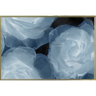 'Rosas Azules 2' Graphic Art Print Format: Gold Metal Framed Paper, Size: 20