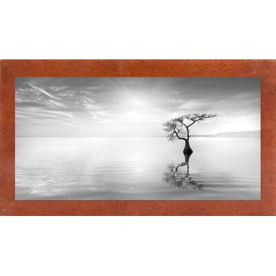 'Judge II' Photographic Print Format: Affordable Canadian Walnut Medium Framed Paper, Size: 19.2