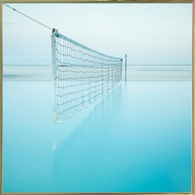 'Net at Pool' Photographic Print Format: Gold Metal Framed Paper