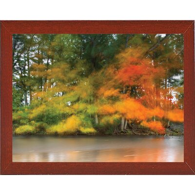 'Trees, Water and Wind' Graphic Art Print Format: Affordable Red Mahogany Medium Framed Paper