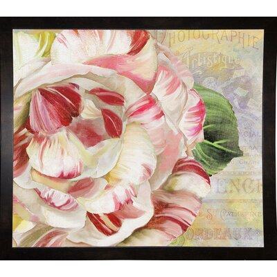 'Camellias II' Graphic Art Print Format: Black Medium Framed
