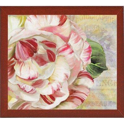 'Camellias II' Graphic Art Print Format: Red Mahogany Medium Framed