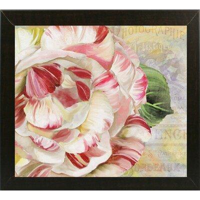'Camellias II' Graphic Art Print Format: Brazilian Walnut Medium Framed