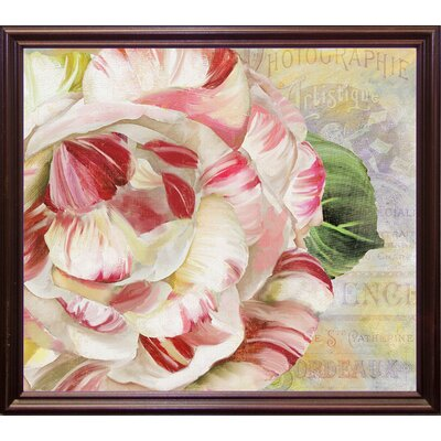 'Camellias II' Graphic Art Print Format: Cherry Grande Framed