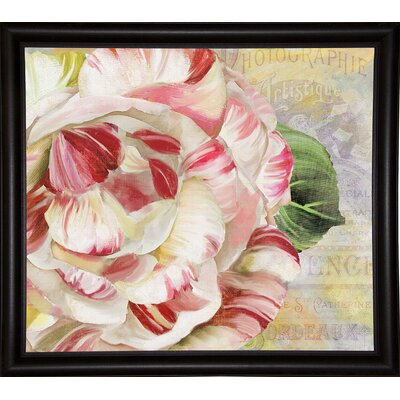 'Camellias II' Graphic Art Print Format: Bistro Expresso Framed